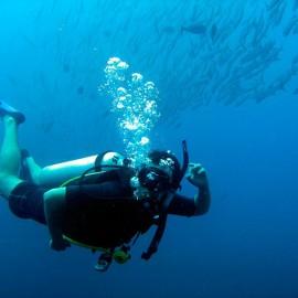 Scuba Diver In Una Una Sulawesi