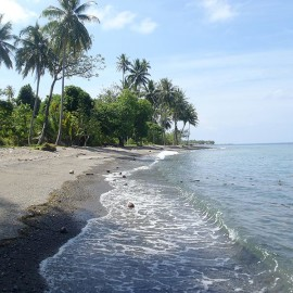 Una Una Beach New Dive Resort Planed